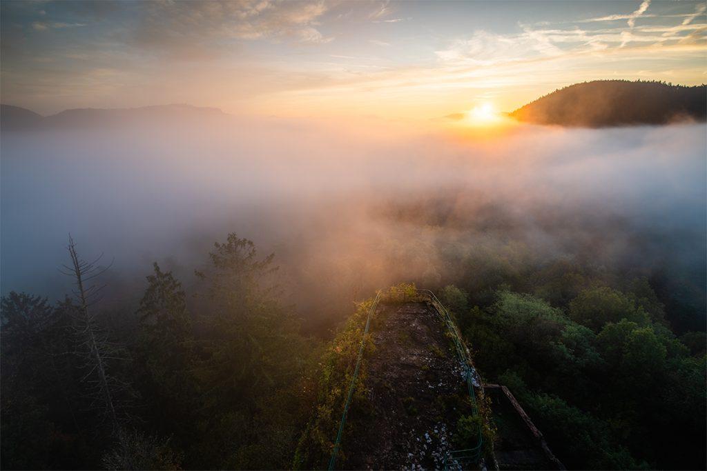 Nebel im Pfälzerwald Burg Drachenfels
