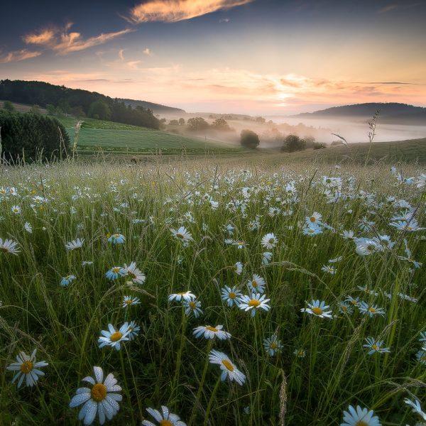 Erlerne Landschaftsfotografie in diesem Fotokurs.
