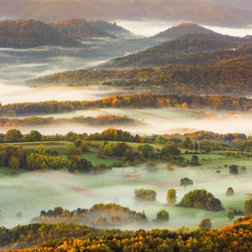 Herbstlicher Pfälzerwald mit Nebelschleiern im Tal.