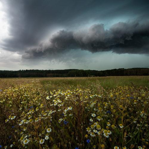 Die schönsten Wolkenstrukturen werden von Superzellen erzeugt.