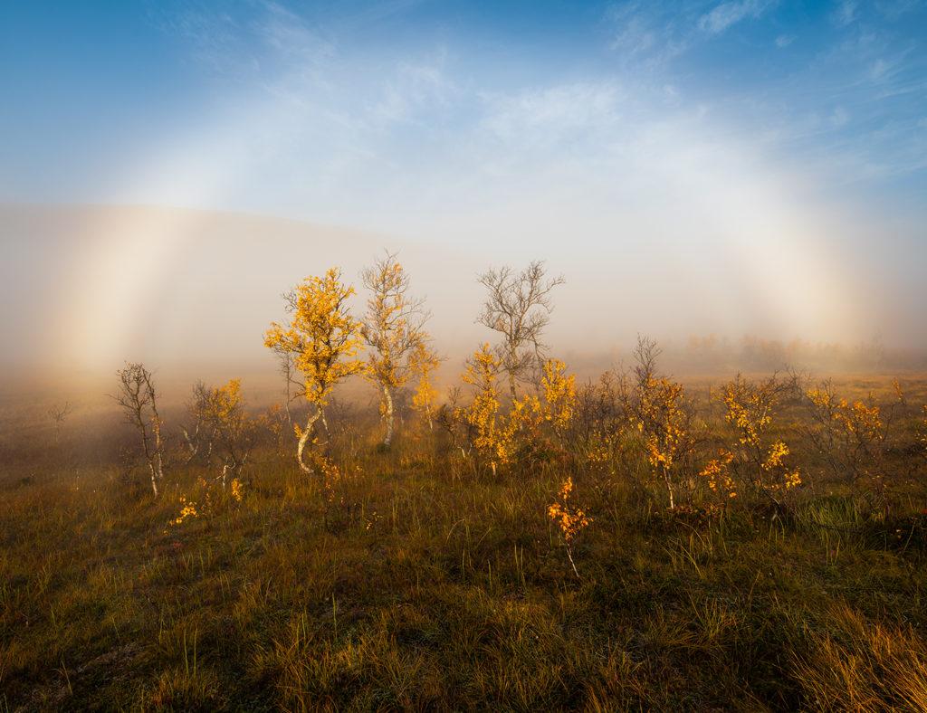 Nebelbogen in der Landschaftsfotografie als Fotomotiv zum Vorhersagen.