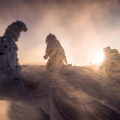 Schneetreiben verursacht durch einen Schneesturm auf der Hornisgrinde.