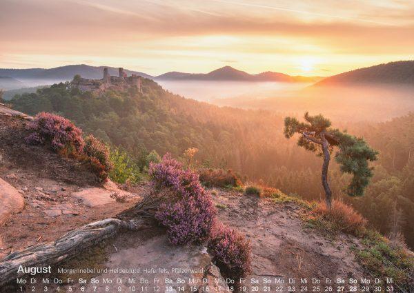 Pfälzerwald Landschaftsfotografie