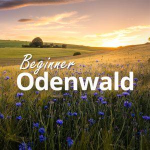 Erlerne die Fotografie im Odenwald.